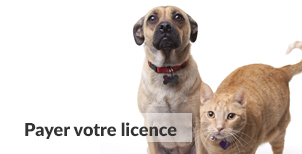 Payer votre licence | Carrefour Canin